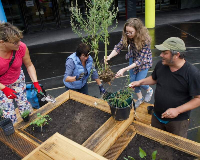 Ab an die Beete! - Bepflanzungs-Workshop auf dem Vorplatz der Urania