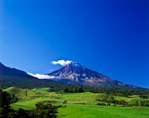 Bild: Neuseeland - Grünes Paradies im Südpazifik