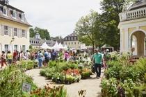 Bild: Das Gartenfest Hanau - Tagesticket