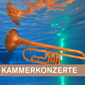 Bild: 6. Kammerkonzert - Harfe trifft ... Südamerika