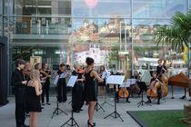 Bild: Musiksommer Altensteig
