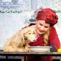 Der kleine gelbe Hund -