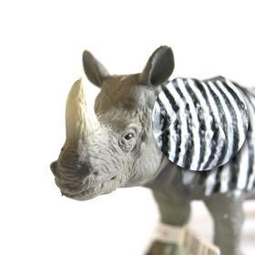 Bild: Was das Nashorn sah, als es auf die andere Seite des Zauns schaute - Jens Raschke