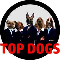 Bild: Top Dogs
