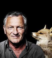 Bild: Josef Brustmann - Fuchstreff - nix für Hasenfüsse