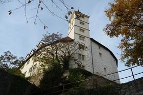 Bild: Führung durch Schloss Kaltenstein - virtuell
