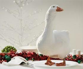 Bild: Von Gänsen und Schwänen - Weihnachtskonzert