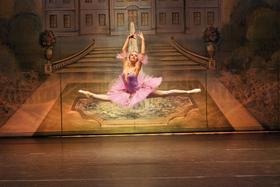Bild: Dornröschen - mit Märchenerzählerin - Ein fantastisches Ballettmärchen für Groß und Klein