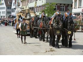 Bild: Historischer Festzug - Schützenfest 2017