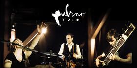 Bild: Pulsar Trio - NEU! - Foyer Jazz