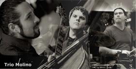 Bild: Trio Molino