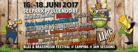 Bild: MUSIKPROB  BLAS & BRASSMUSIKFESTIVAL 2017 - Kombi-Ticket Freitag + Samstag