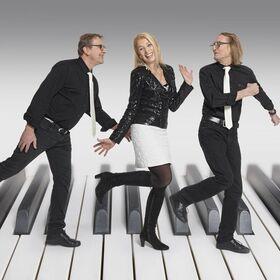 Bild: Hildegard Pohl Trio -