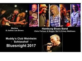 Bild: Bluesnight Weinheim 2017 - Muddy's Club Open Air
