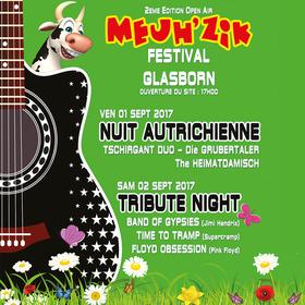 Bild: Open Air MEUH´ZIK Festival 2017 - Tribute Night