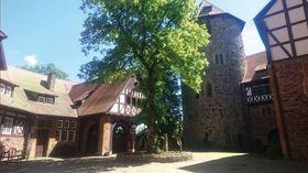 Bild: Klassik auf Burg Lichtenfels - Kombiticket