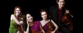 Bild: Daedalus Quartet - Daedalus Quartett