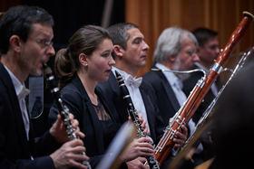 Bild: 1. Sinfoniekonzert - der Brandenburger Symphoniker