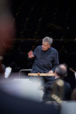 Bild: 8. Sinfoniekonzert - der Brandenburger Symphoniker