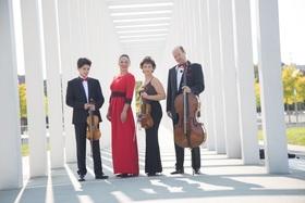 Bild: Klassikkonzerte mit Alina Kabanova - Ein klassischer Abend mit der bezaubernden Künstlerin und den St. Petersburg Virtuosen
