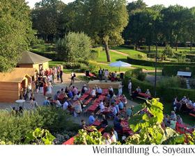 Bild: Klassik am Weinberg - von der Weinhandlung C. Soyeaux