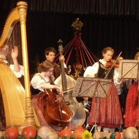 Bild: 25. Europäisches Volksmusikkonzert - Veranstalter Deutsche Jugend in Europa