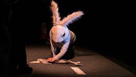 Bild: Das platte Kaninchen - bunny works for five