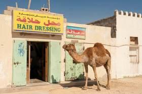 Bild: Oman, Abu Dhabi & Dubai – Reisen zwischen Vergangenheit und Zukunft - mit Hartmut Fiebig