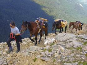 Bild: Der lange Ritt  – Sieben Jahre unterwegs in USA, Kanada & Alaska - mit Sonja Endlweber