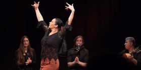 Bild: Flamenco entre amigos - Anette Darda