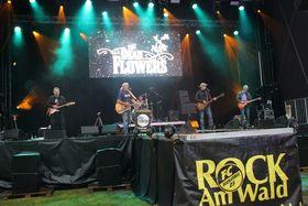 Bild: ROCK AM Wald 2018 - Das Festival-Highlight in der Region Nordbaden