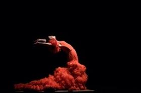 """Bild: Olga Pericet - """"La espina que quiso ser flor o la flor que soñó con ser bailaora"""""""