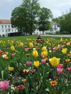 Bild: Frühlingskonzert der