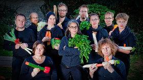 Bild: Ich glaube, meine Möhre pfeift! - Konzert im Rahmen des Solanum Festivals Rheinsberg