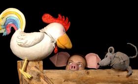 Bild: Freunde - Kinderstück nach Helme Heine