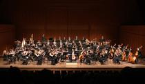 Bild: Sinfoniekonzert des Hochschulorchesters Trossingen | Leitung: Prof. Sebastian Tewinkel