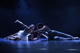 Bild: Das Schwanensee-Märchen - Tanztheater