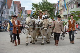 Bild: Historischer Festzug - Schützenfest 2018