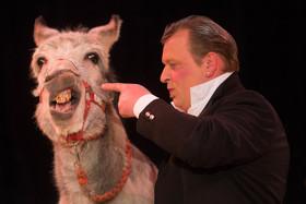 Bild: Circus Carelli - Nürnberg - Die Gebrüder Barelli präsentieren die affengeilste Circusshow 2018