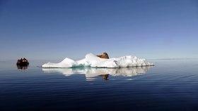 Bild: Expedition Spitzbergen - Eine Multivisions-Reportage von und mit Albert Rohloff
