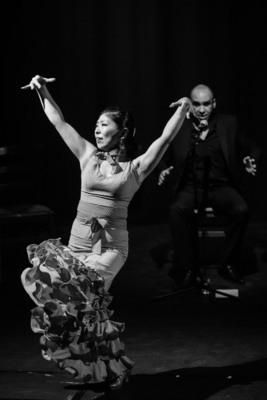 Bild: Aire Flamenco - Projekttheater Dresden