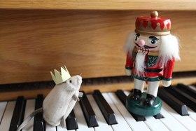 Bild: 1. Kinderkonzert - Nußknacker und Mausekönig