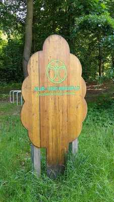 Bild: Klimawaldwanderung - in Europas erstem Kur- und Heilwald in Heringsdorf