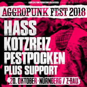 Bild: Aggropunk Fest - Nürnberg