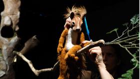 Bild: Herr Eichhorn und der Besucher vom blauen Planeten - Meinhardt & Krauss