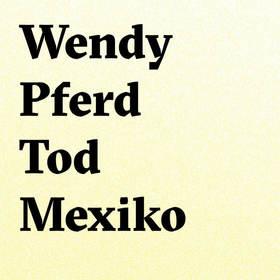 Bild: Wendy Pferd Tod Mexiko - Natascha Gangl & Rdec'a Raketa