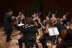 Bild: Südwestdeutsches Kammerorchester Pforzheim