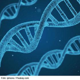 Bild: Gene nach Maß?