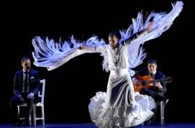 Bild: Baile de Autor - Manuel Liñán