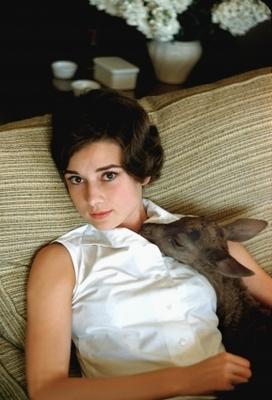 Bild: En Suite (Allein mit Audrey Hepburn) - Kammerspiele Wiesbaden